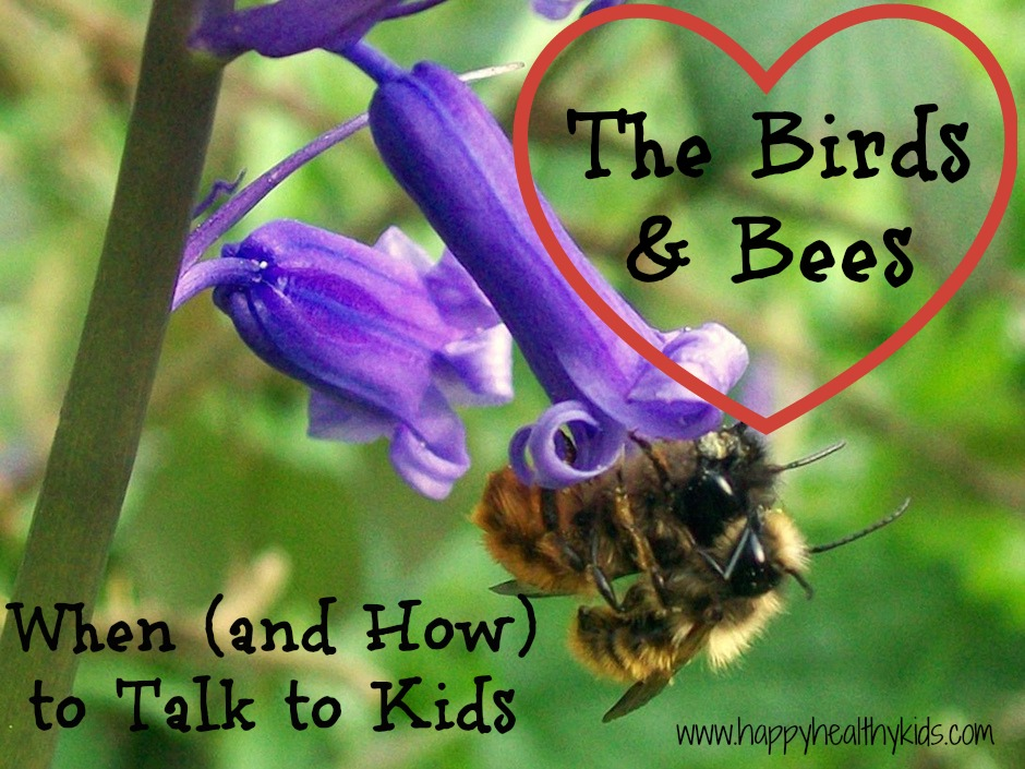 when to talk about birds and bees