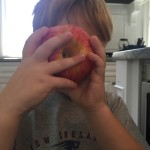 apple rings 3